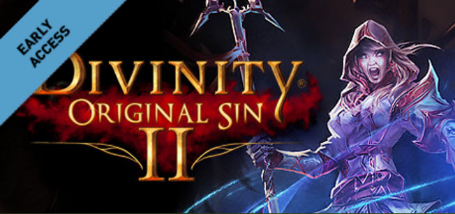 【Divinity Original Sin 2】アーリーアクセスのレビュー 感想